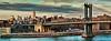 The Manhattan bridge (dani.Co) Tags: city bridge panorama usa newyork skyline puente nikon bravo manhattan ciudad empirestatebuilding chrysler bigapple eeuu d300 granmanzana danico flickrdiamond
