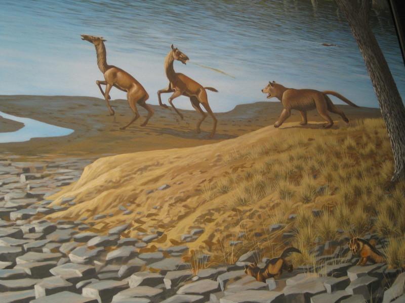 Cenozoic Creatures