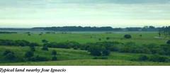 Uruguay (tmaluchnik) Tags: travel uruguay lifestyle finance puntadeleste investing withoutborders intellectualadventurers