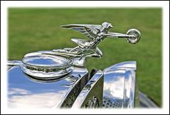 Packard Goddess of Speed (sjb4photos) Tags: hoodornament packard autoglamma goddessofspeed 1993meadowbrook