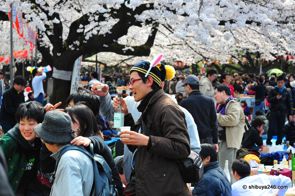 Lots of happy hanami revelers. Most people who drink too much seem to fall asleep.