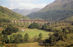 Jacobite Steam Train on Glenfinnan Viaduct (uempe) Tags: uk greatbritain bridge analog train scotland photo europa europe foto unitedkingdom eisenbahn rail railway zug olympus scan viaduct negative scanned gb 1995 analogue brcke bahn glenfinnan steamtrain schottland negativ jacobite glenfinnanviaduct jacobitesteamtrain olympusom40 grosbritannien