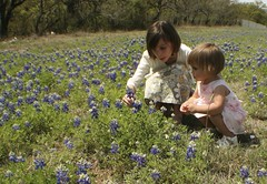 IMG_7489 (Victorias in New Braunfels) Tags: texas bluebonnet ainsley genevieve 2010
