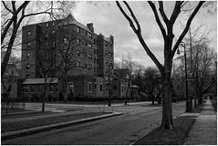 'Mystery Building: Melancholy & Desolation in Low Key ' (Alexxir) Tags: building bw bwphoto spooky desolated overcast grey street perspective dark dreary mysterious huntedhouse enchanted old nonmodern vintage outofplace roadperspective alley trees lamppoles streetlights greysky wellington cold winter lateautumn colonial house