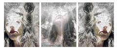 Fake News Delirium (Vanessa Vox) Tags: fakenewsdelirium selfies selfportrait emotions intheflowofnews news collage vanessavox triptychs