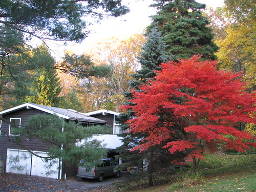 Hartwell house in Pleasantville with fall foliage