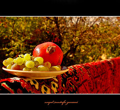Pomegranate (seyed mostafa zamani) Tags: life new city autumn red color colour macro tree green art love beautiful yellow fruit canon carpet photography leaf nice colorful asia photographer iran arts culture pomegranate daily dreams iranian 2009 grape   lovly               eos450d 450d           natvryalyst
