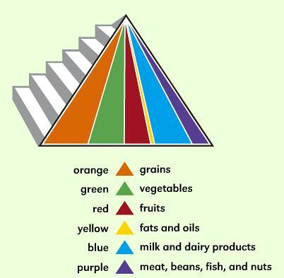 Food Guide Pyramid Servings