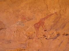 Libye 2005 - Peintures rupestres (girafes) (Bertrand PLEUTIN) Tags: sahara libye akakus ghat cbertrandpleutin bertrandpleutin peinture rupestre peintures rupestres painting paintings rockart