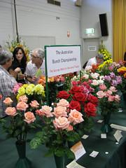 Centenary Rose Show