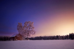 Dreamland (Mikko Lagerstedt) Tags: longexposure blue trees light shadow sky sun snow cold color tree nature colors 30 night clouds barn photoshop suomi finland dark lens stars landscape photography lights star photo cabin nikon warm long expos