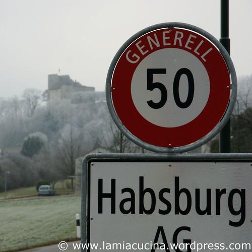 CH-5245 Habsburg 0_2010 01 20_4758