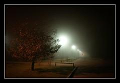18.365 - Schiranna nella nebbia (Gilmoth) Tags: winter fog utata nebbia inverno varese tw 2010 schiranna project365 21100 thursdaywalks sonyalpha700 sony16105 utata:project=tw196