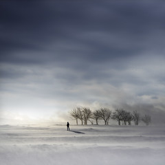 Winter Tears (Midnight - digital) Tags: blue trees winter light sky snow cold square frozen solitude tears alone loneliness wind horizon atmosphere eerie intriguing meditation contemplative contemplation