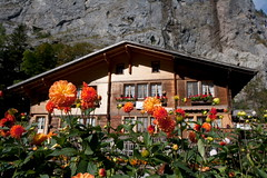 Lauterbrunnen, Switzerland (YoWangdu) Tags: jungfrau swissalps berneroberland swissmountains alpsphoto