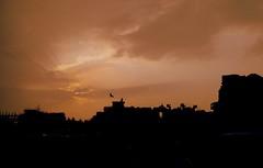 (Ratnakar2.) Tags: city sun building beach silhouette sepia evening nokia eagle dusk rays vizag visakhapatnam n85