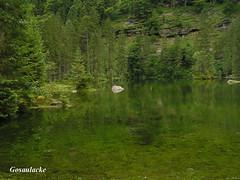 Gosaulacke hinter dem vorderen Gosausee, NGID128578946 (naturgucker.de) Tags: gosau sterreich naturguckerde obersterreich cwolfgangkatz ngid128578946
