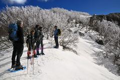 Monte Quacella (studiolof) Tags: mountain snow neve cai sicily inverno montagna sicilia carbonara madonie ciaspole ciaspolata pianobattaglia parcodellemadonie quacella rosarioloforti fotoloforti