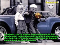 Romani 08-05 (Palosi Marton) Tags: kids childrens copii crestine versete biblice