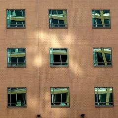 nine windows (pho-Tony) Tags: windows urban sun detail reflection square grid sheffield nine format array