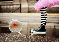 Rain or Shine - You're a Friend of Mine! (Kimberly Chorney) Tags: road fish reflection cute puddle 50mm funny sweet naturallight niece fishbowl textured funsocks converseshoes canadianphotographer pinktutu standinginapuddl