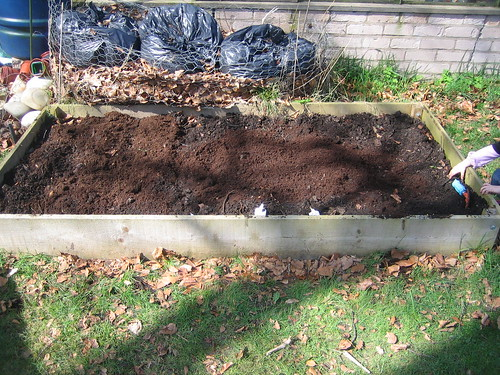 gardening042010 048