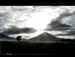 The beauty of the light <> la belleza de la luz