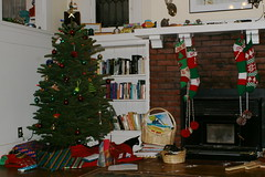 Tree2008