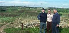 El vino elaborado en tierras de la mafia