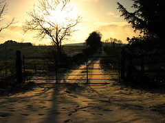 Sunlit Snow (Mindful Youth) Tags: sunset snow rural landscape gate shadows lane fields countrylandscapes
