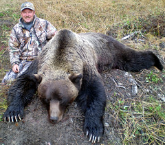 The sport hunting of grizzlies occurs every spring and fall in BC