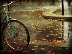 Escenario de otoo (inmacor) Tags: road city autumn france rain reflections geotagged hojas calle drops lluvia ciudad bicicleta gotas cycle urbana otoo lovely leafs rue rueda pars ambiente reflexes uro abigfave ltytr2 ltytr1 ltytr3 inmacor thebestofmimamorsgroups melancoia theoriginalgoldseal
