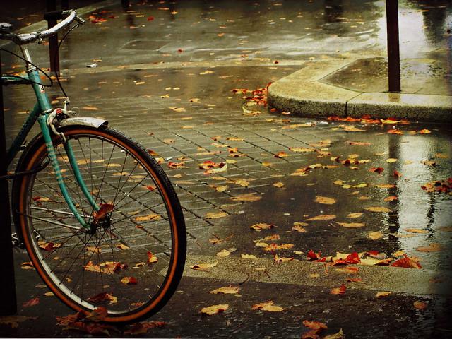 Escenario de otoño