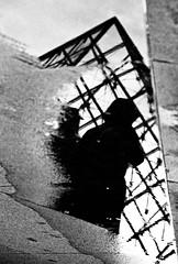 ~ contemplation ~ (Janey Kay) Tags: november distortion paris france reflection home water puddle frankreich eau wasser novembre pyramid louvre candid streetphotography reflet stadt abstraction pyramide spiegelung 2009 ville parigi flaque chezmoi musedulouvre charco pftze pozzanghera francja ieohmingpei iloveparis nikkor18200mmvr paryz the4elements nikkor18200mmf3556vr janeykay parisiledefrance photographiedelarue