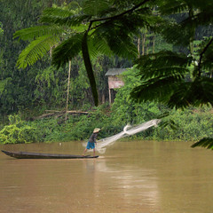 Lao-style fishing (Bn) Tags: lunch fisherman topf50 lunchtime palmtrees catching woodenboat laos riverbank raining hardwork tms fishingnet riverlife mekongriver muddyriver pakse browncolor tellmeastory catchingfish chinesehat greenlandscape 50