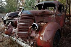 International & GMC (Mr Perry) Tags: truck rust international oxidation oldtruck ironoxide 1939 gmctruck sigma1020mm simcoecounty intheweeds pentaxk10d 1939international