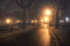 Foggy Night (Guido Musch) Tags: trees mist tree netherlands fog night bench bomen nikon nacht nederland bank boom groningen hdr noorderplantsoen bankje d300 sigma1020 tonemapping guidomusch combinedwithsomemanualblending