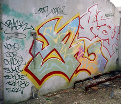 RASK (wideangle07) Tags: dublin fish art paint factory belfast spray artists graff 90s drogheda dundalk tda irsh klann