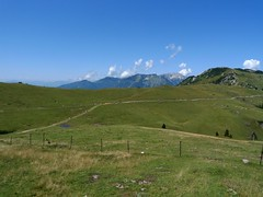 The Velika planina plateau (peter++) Tags: landscape plateau hut slovenia slovenija planina velika