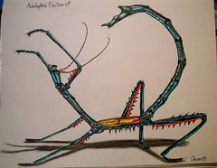 Achrioptera fallax... (Addicted2Hymenoptera :)) Tags: blue shadow red pet yellow illustration pen pencils insect sketch wings shiny drawing multicoloured exotic marker stick striped spiny phasmid phasmatodea unic kohinoor steadtler fallax achrioptera