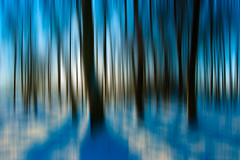 Wraiths (scott masterton) Tags: trees light snow motion blur scott scotland pentax east lothian fascinating masterton sigma1020mm lammermuir garvald k200d