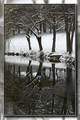 Neige & Reflets (Regard81 (peu prsent en ce moment.)) Tags: platinumheartaward dragondaggerphoto