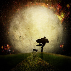 Midnight shadows (E Dina PhotoArt) Tags: moon tree fairytale mond illusion fantasy dreams edina mrchen ourtime memoriesbook awardtree goldenart miasbest musicsbest sleepingtimewinner daarklands magicunicornverybest selectbestfavorites trolledproud imagofabulae
