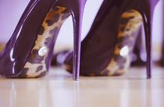 (heartbreaker [London]) Tags: purple dolce leopard heels dg gabbana