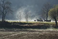 Agricoltura (VFM89) Tags: mist fog colore nebbia trattore agricoltura