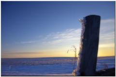 fence post.jpg (Father Tony) Tags: winter snow southdakota landscape photo seasons prairie hdr mclaughlin fencepost adobephotoshopelements canonefs1755mmf28isusm canoneos50d ortoneffect adobephotoshopelements7 corsoncountysd