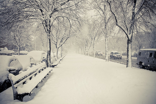 Snowstrom In New York 2010