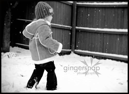 feb snow day7