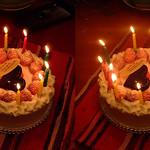 DSCF1189 birthday cake (parallel 3D) thumbnail