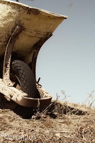 63-wheelbarrow soft-faded